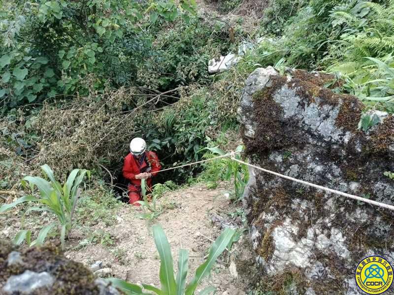 奥特多洞穴探险队在洞穴中发现红点齿蟾成体